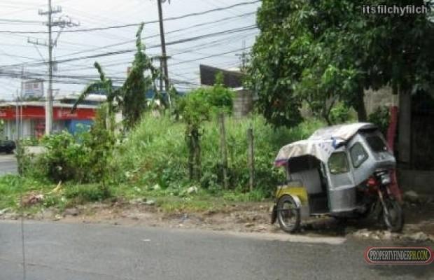 Photo #6 Commercial Land for sale in Cavite, Gen. Mariano Alvarez