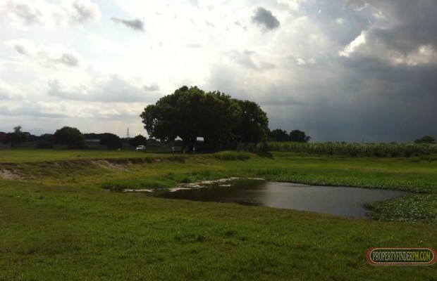 Photo #2 Industrial Land for sale in Pampanga, Arayat