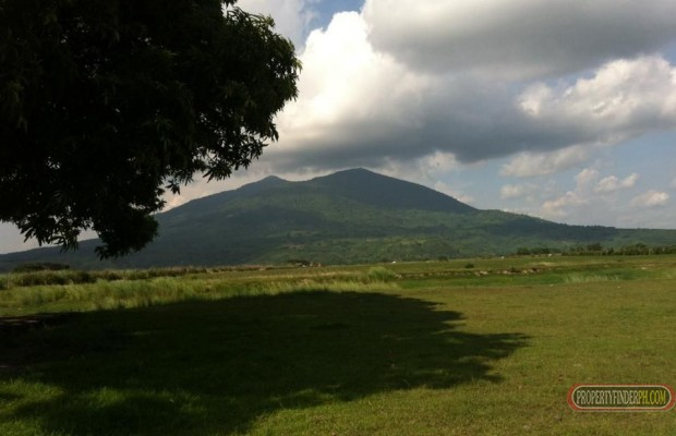 Photo #7 Industrial Land for sale in Pampanga, Arayat