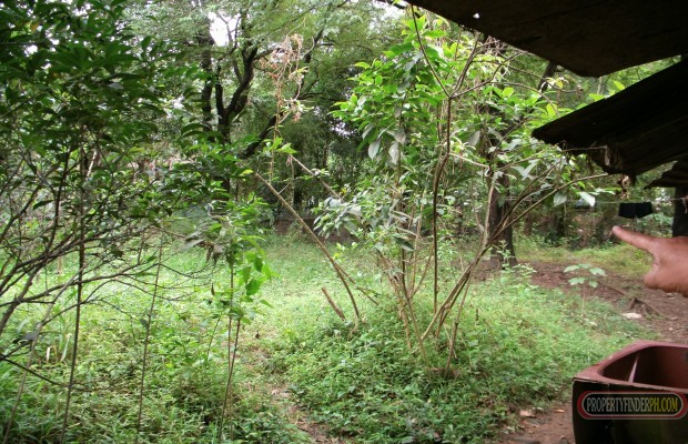Photo #2 Residential Land for sale in Bulacan, San Jose del Monte City