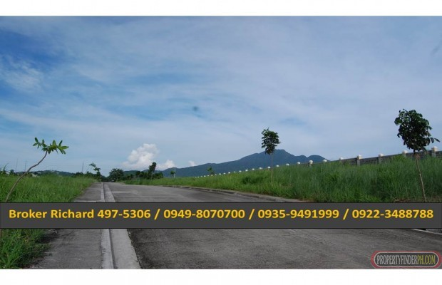 Photo #6 Residential Land for sale in Laguna, Calamba City