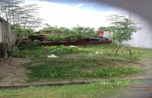 Photo #3 Residential Land for sale in Cavite, Dasmarinas