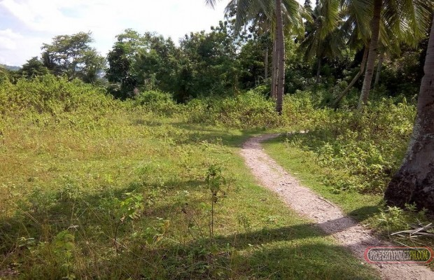 Photo #3 House and Lot for sale in Cebu, Minglanilla