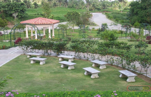 Photo #9 Residential Land for sale in Cavite, Silang