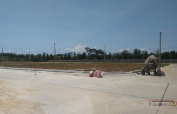 Photo #5 Residential Land for sale in Batangas, Bauan