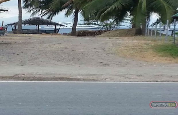 Photo #1 Commercial Land for rent in Batangas, Mabini