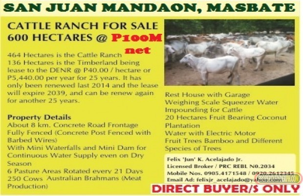 Photo #1 Agricultural Land for sale in Masbate, Mandaon
