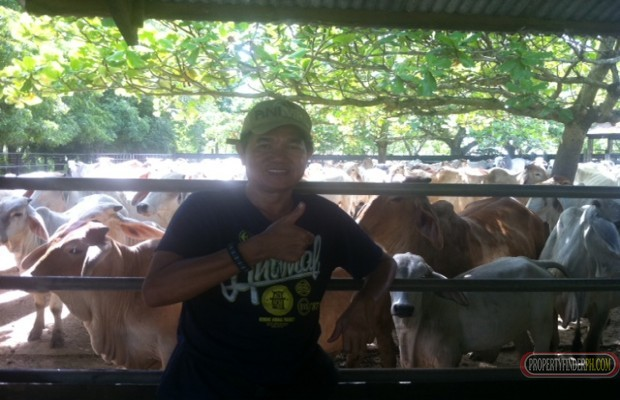 Photo #4 Agricultural Land for sale in Masbate, Mandaon