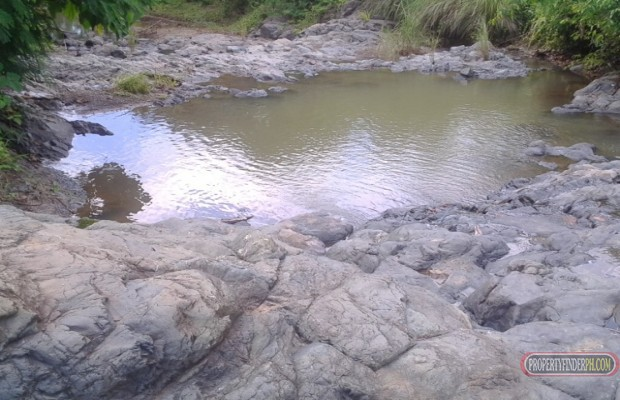 Photo #5 Agricultural Land for sale in Masbate, Mandaon