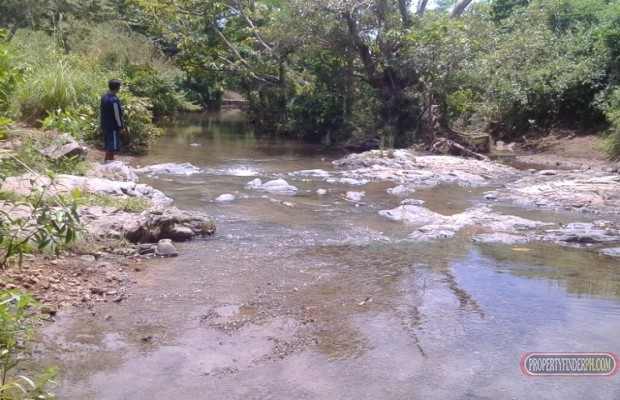 Photo #7 Agricultural Land for sale in Masbate, Mandaon