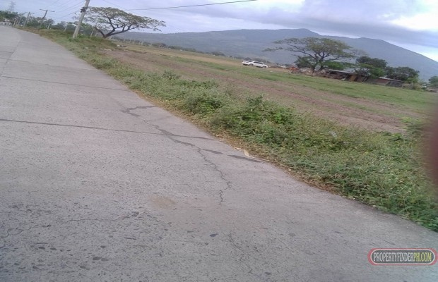 Photo #3 Agricultural Land for sale in Pampanga, Arayat