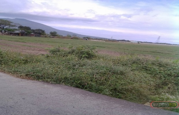 Photo #4 Agricultural Land for sale in Pampanga, Arayat