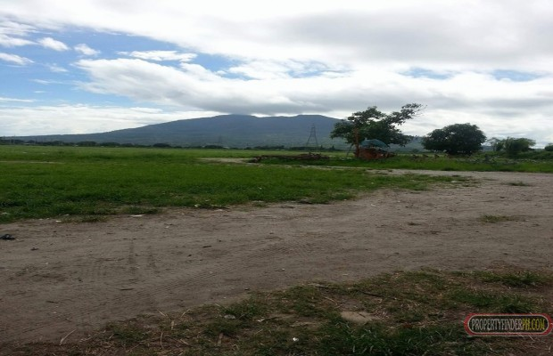Photo #5 Agricultural Land for sale in Pampanga, Arayat
