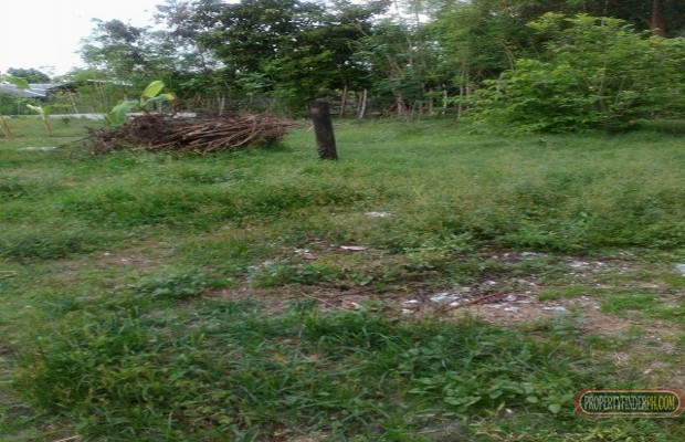 Photo #3 Residential Land for sale in Pampanga, Mabalacat