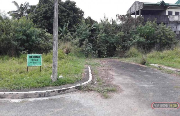 Photo #5 Commercial Land for sale in Metro Manila, Quezon City