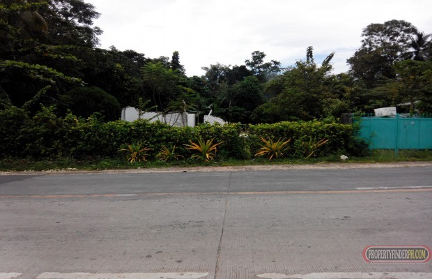 Photo #3 Condominium for sale in Southern Leyte, San Juan