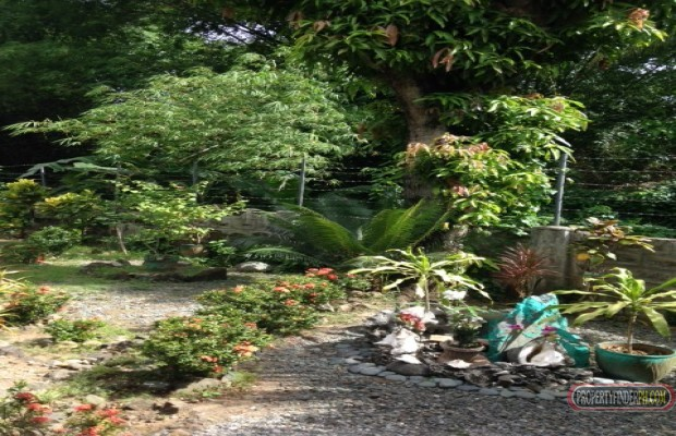 Photo #8 House and Lot for sale in Rizal, Taytay