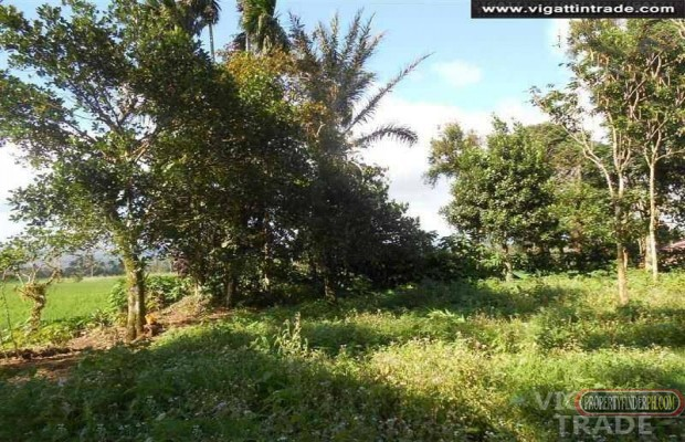 Photo #3 Residential Land for sale in Laguna, Majayjay