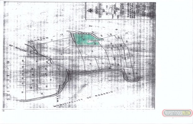 Photo #2 Agricultural Land for sale in Batangas, San Juan