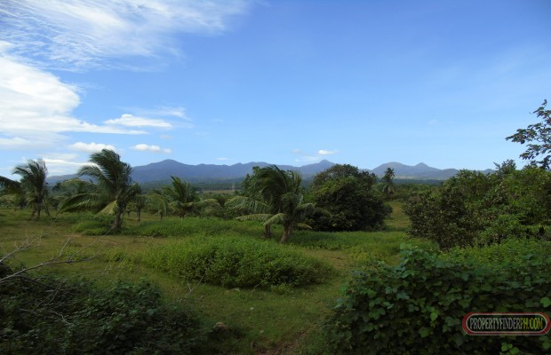 Photo #1 Agricultural Land for sale in Bataan, Bagac