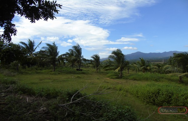 Photo #2 Agricultural Land for sale in Bataan, Bagac