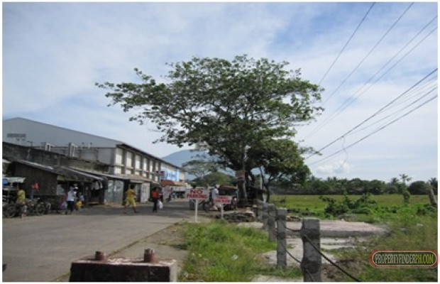 Photo #4 Commercial Land for rent in Camarines Sur, Pili