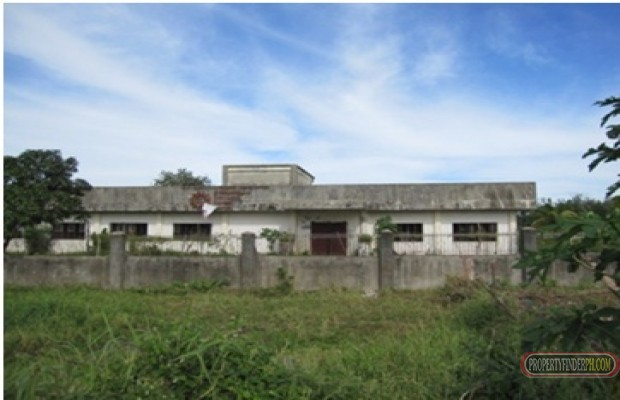Photo #5 Commercial Land for rent in Camarines Sur, Pili