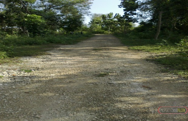 Photo #2 Residential Land for sale in Bohol, Dauis