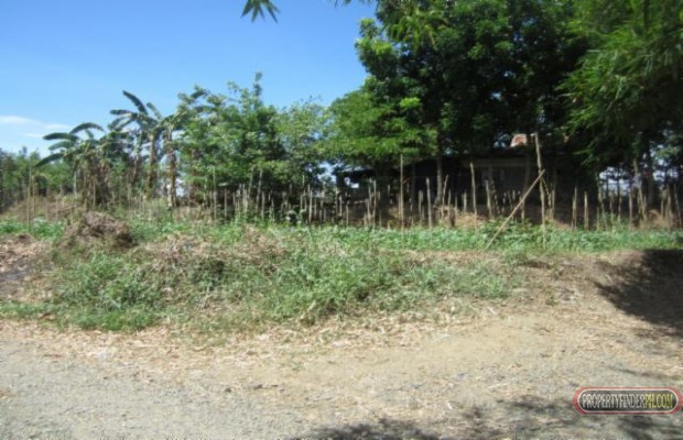 Photo #4 Agricultural Land for sale in Bulacan, Angat