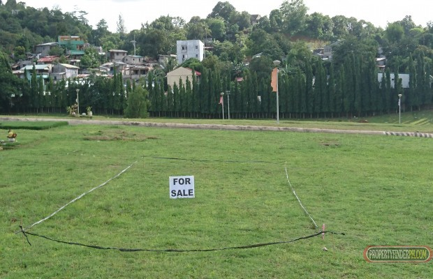 Photo #7 Memorial Land for sale in Rizal, Antipolo City