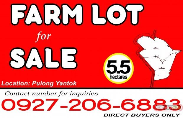 View listing ID ref#56035
