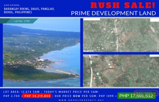 Photo #1 Residential Land for sale in Bohol, Dauis