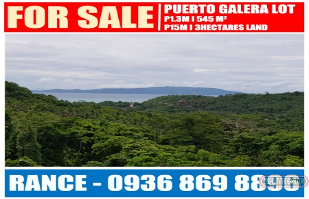 Photo #1 Residential Land for sale in Oriental Mindoro, Puerto Galera