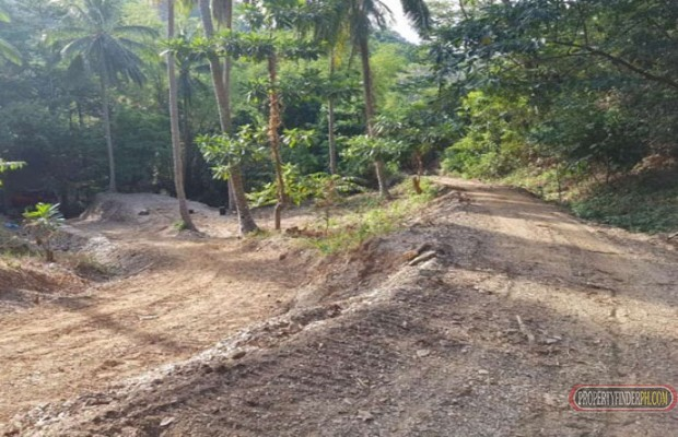 Photo #6 Residential Land for sale in Oriental Mindoro, Puerto Galera
