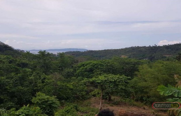 Photo #7 Residential Land for sale in Oriental Mindoro, Puerto Galera