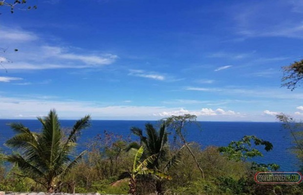 Photo #10 Residential Land for sale in Oriental Mindoro, Puerto Galera