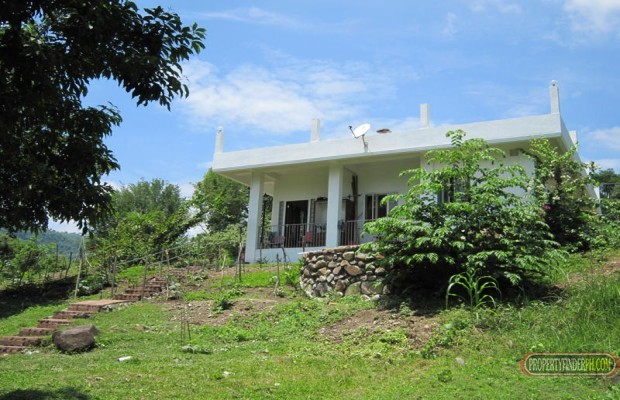 Photo #3 Agricultural Land for sale in Batangas, San Juan