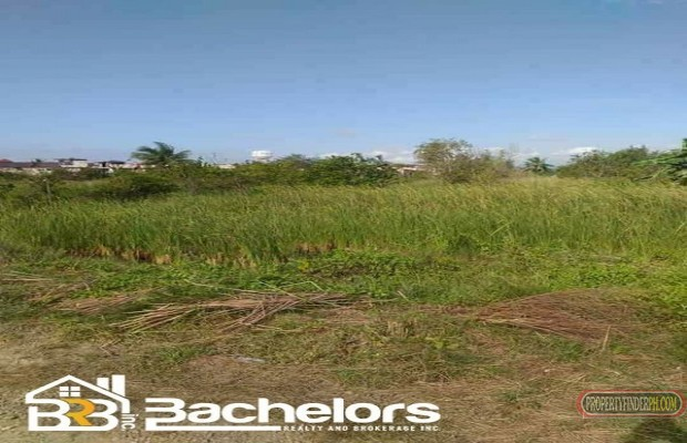 Photo #2 Residential Land for sale in Cebu, Lapu-Lapu City