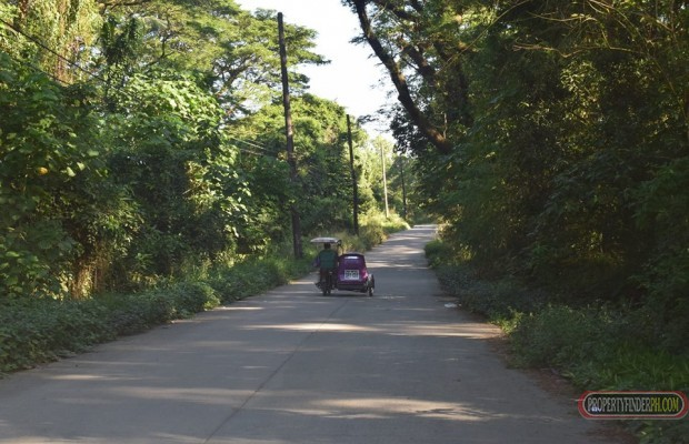 Photo #1 Commercial Land for sale in Rizal, Montalban