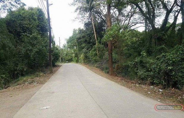 Photo #2 Commercial Land for sale in Rizal, Montalban