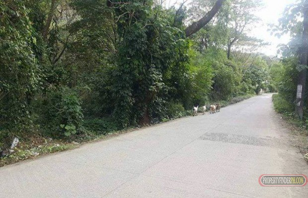 Photo #3 Commercial Land for sale in Rizal, Montalban