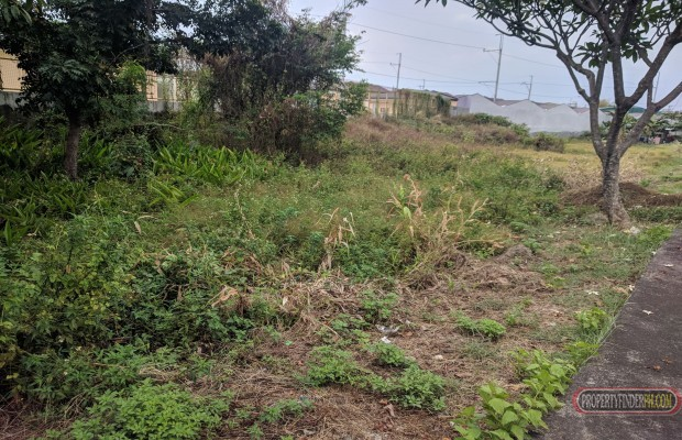 Photo #1 Residential Land for sale in Metro Manila, Caloocan