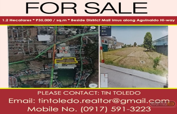 Photo #2 Commercial Land for sale in Laguna, Binan