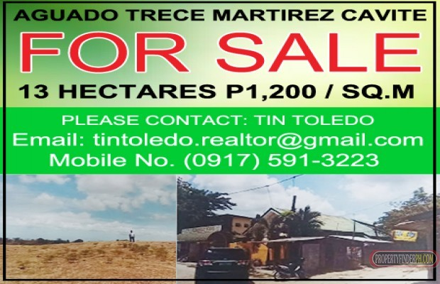 Photo #3 Commercial Land for sale in Laguna, Binan
