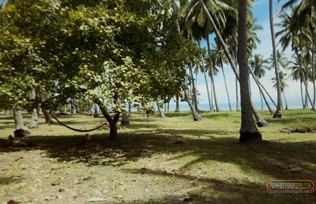 Photo #3 Commercial Land for sale in Palawan, Puerto Princesa City