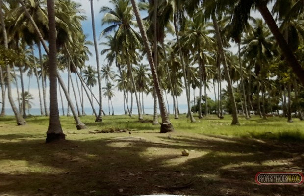 Photo #4 Commercial Land for sale in Palawan, Puerto Princesa City