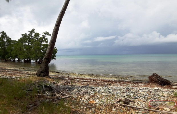 Photo #6 Commercial Land for sale in Palawan, Puerto Princesa City