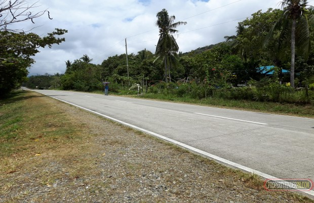 Photo #2 Commercial Land for sale in Palawan, Puerto Princesa City