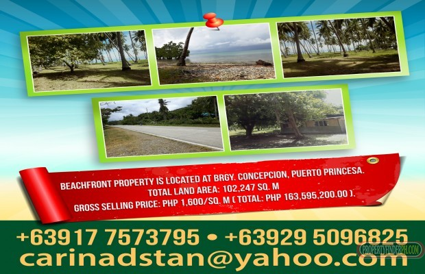 Photo #1 Commercial Land for sale in Palawan, Puerto Princesa City