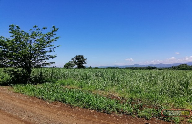 Photo #1 Agricultural Land for sale in Bukidnon, Malaybalay City